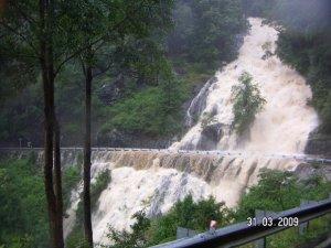 floods-dorrigo-2