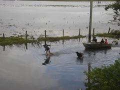 flooding 001