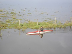 flooding 012