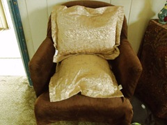 golden spread 001cushions