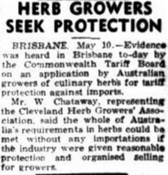 HERB GROWERS Townsville Daily Bulletin (Qld. 1885 - 1954), Wednesday 11 May 1949,