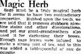 SAGE The Advertiser (Adelaide, SA 1931 - 1954), Tuesday 4 February 1936