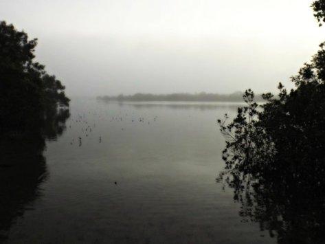 lag mist 2