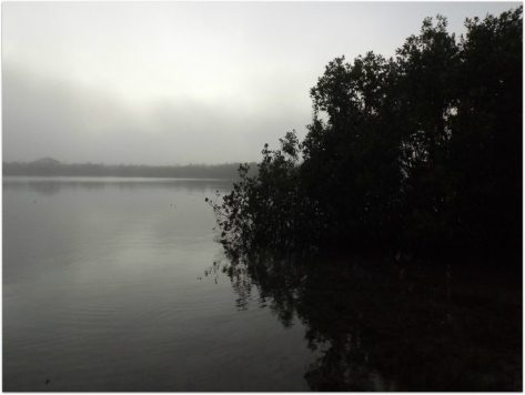 lag mist 3